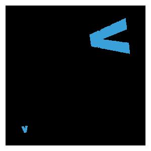 logo ssv white border